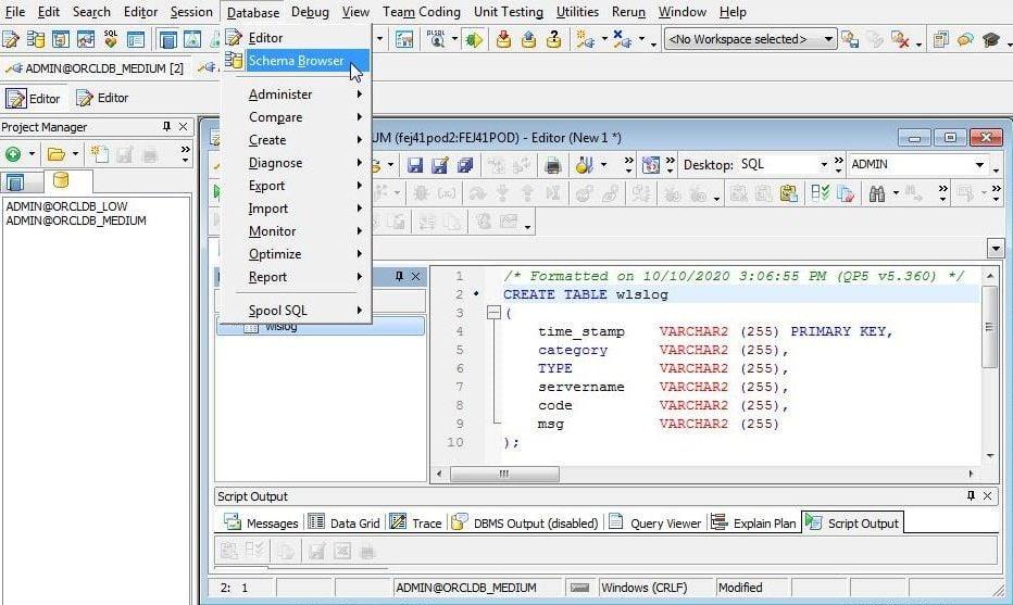 Figure 8. Database>Schema Browser