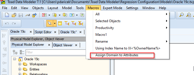Screen shot showing Toad Data Modeler, Macros Tab, Assign Domain to Attributes.