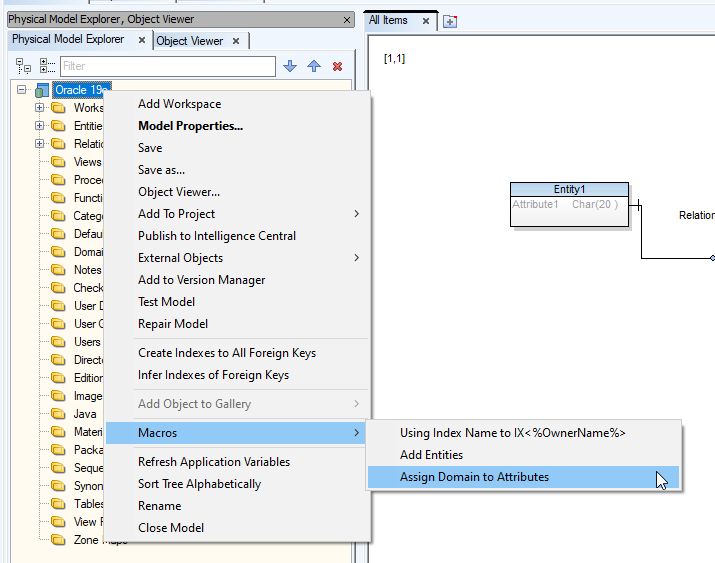 Screen shot showing Physical Model Explorer, Object Viewer node, Macros, Assign Domain to Attributes.