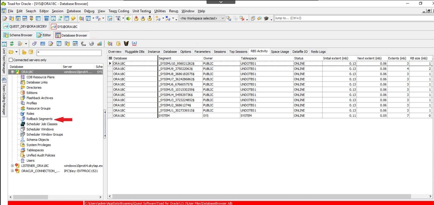 Toad for Oracle. Database Browser. RBS Activity tab displays an overview of rollback segment activity.