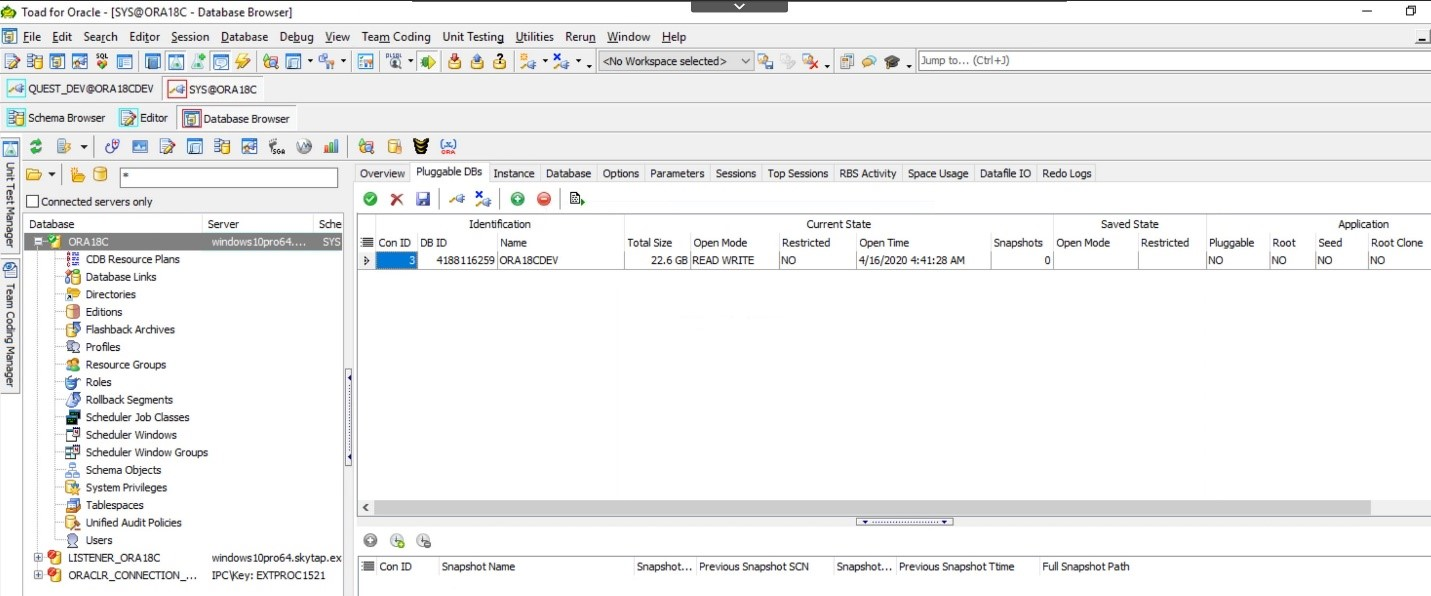 Toad for Oracle. Database Browser showing that by clicking on the Pluggable DBs tab you will see any pluggable databases.