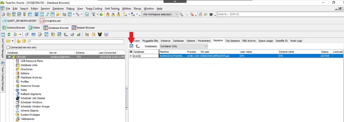 Toad for Oracle. Database Browser. Click on the Session Browser in the upper left.