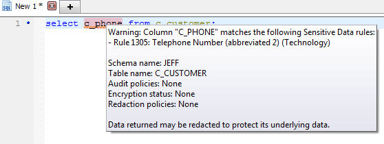 Figure 4. Hover over the identified sensitive data to see notification details
