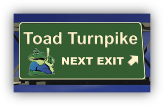 ToadTurnpikeExit_CorrectAspectRatio