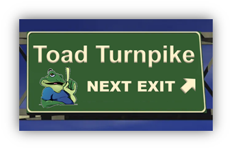 Toad Turnpike: Real stories from the road.