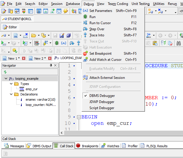 Toad for Oracle PL/SQL debugger options.